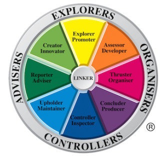 team management systems profiling tools by Thrill accredited specialists in team building