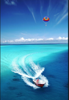 Thrill Parasailing and Exotic Adventures