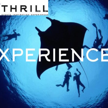 experiences by thrill team events