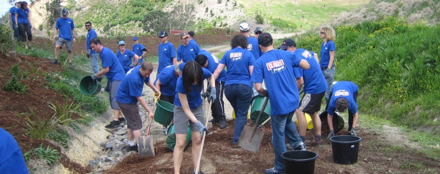 corporate tree planting teams enjoy a thrill event for improving local environments