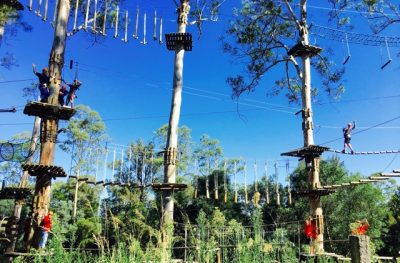 ropes course adventure parks training facility by Thrill