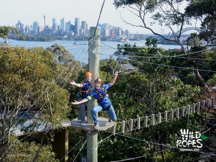 Thrilling wild ropes staff on Sydney Taronga Zoo Treetop adventure team building activities