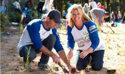 corporate team building activities plant a tree day