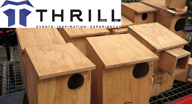 team building native animal shelters and nest boxs in Sydney and Gold Coast saving local wildlife